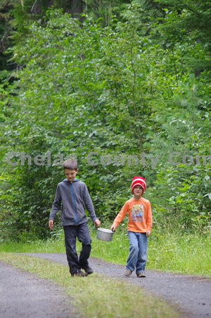 Boys Walking in Woods , JPG Image Download - Steve Scott, Chelan County Commons