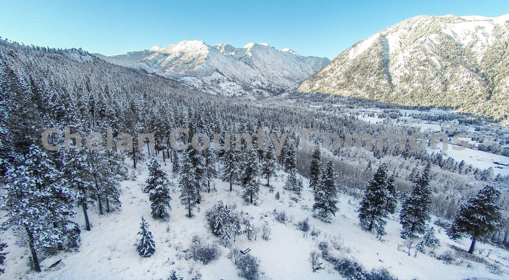 Leavenworth Forest Snow Covered , JPG Image Download - Travis Knoop, Chelan County Commons