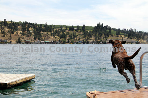 Dog Leaps Into Lake Chelan , JPG Image Download - Travis Knoop, Chelan County Commons
