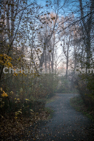 Blackbird Island Misty Trails , JPG Image Download - Travis Knoop, Chelan County Commons