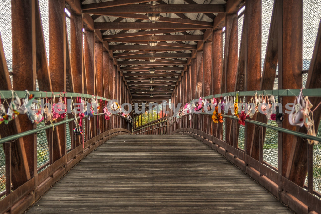 Wenatchee Footbridge with Bras , JPG Image Download - Travis Knoop, Chelan County Commons