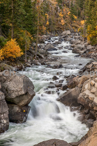 Icicle River Fall Time Lapse