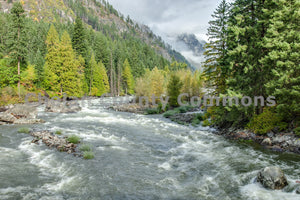 Icicle Creek High Flow , JPG Image Download - Travis Knoop, Chelan County Commons