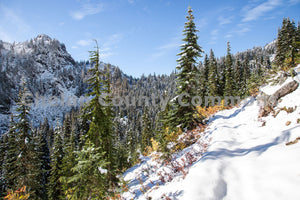 Snow Hillside , JPG Image Download - Travis Knoop, Chelan County Commons