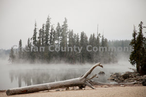 Lake Wenatchee Driftwood , JPG Image Download - Travis Knoop, Chelan County Commons