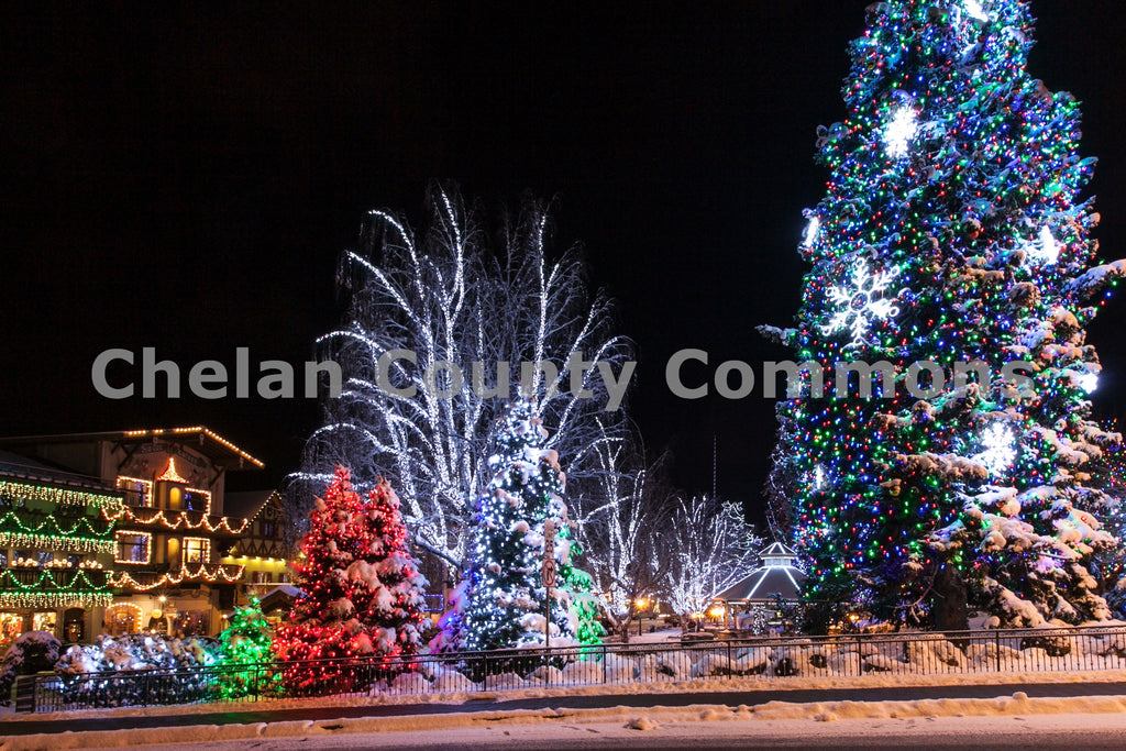 Leavenworth Christmas Tree , JPG Image Download - Travis Knoop, Chelan County Commons