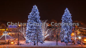 Leavenworth Winter Tree Lights , JPG Image Download - Travis Knoop, Chelan County Commons