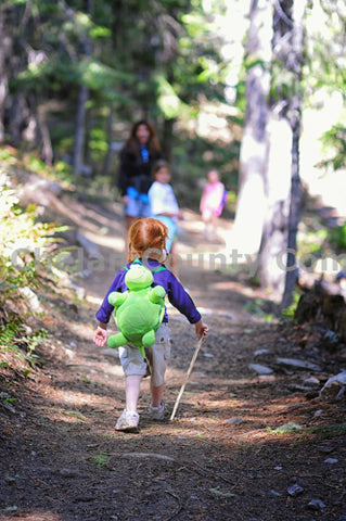 Little Girl Hiker