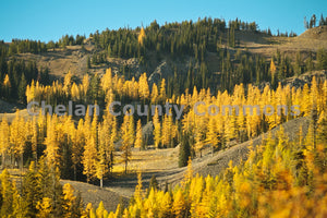 Mission Ridge In The Fall , JPG Image Download - Travis Knoop, Chelan County Commons