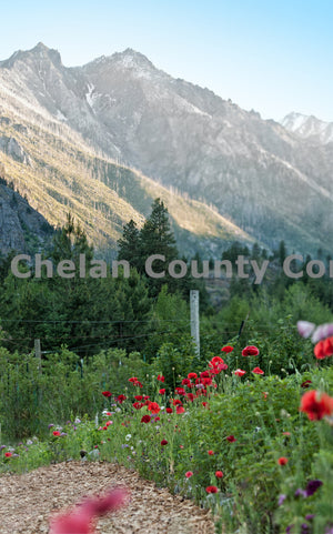 Sleeping Lady at Sunset , JPG Image Download - Heidi Swoboda, Chelan County Commons