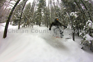 Snowboarder Trees , JPG Image Download - Jared Eygabroad, Chelan County Commons