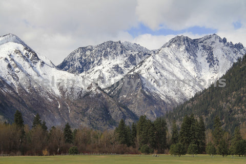 Leavenworth Meadow Vista