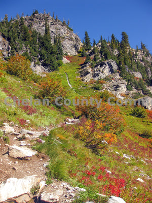 Spider Meadows Fall Colors , JPG Image Download - Travis Knoop, Chelan County Commons
