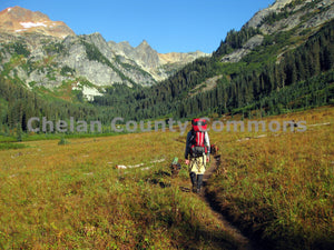 Spider Meadows Hike Closeup , JPG Image Download - Travis Knoop, Chelan County Commons