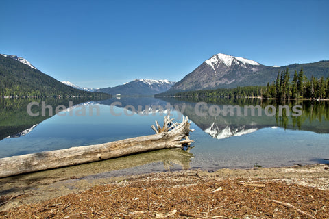 Beach Log at Lake Wenatchee