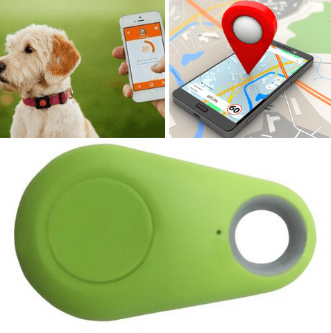 Image of Pet GPS Tracker