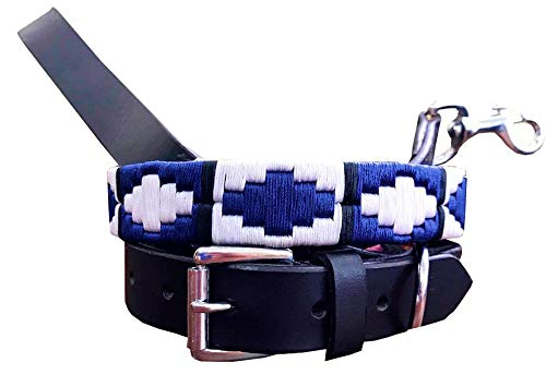 Carlos Diaz Genuine Leather Matching Pair Waxed Embroidered Polo Dog Collar and Lead Set S