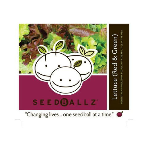 Seedballz Lettuce Mix (1x 4 Oz)