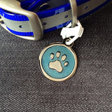 Stainless Steel Polished Color Filled Dog Tag