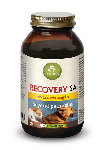 Purica Recovery SA Extra Strength Chewable Tablets 120pk