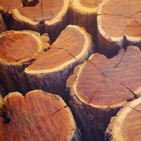 Sekelbos Namibian Hardwood - Order bulk per 750KG (Three Quarter Ton) - Wood Monkeys