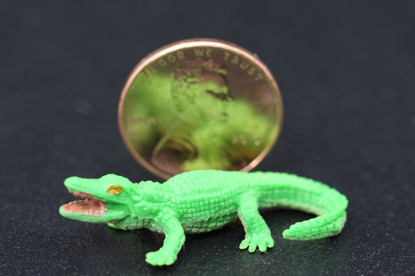 Miniature African Crocodile