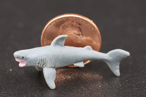 Miniature Great White Shark