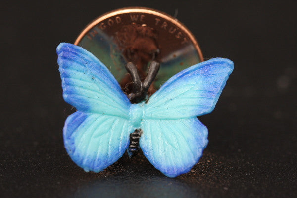 Miniature Blue Butterfly