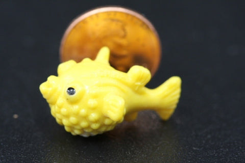 Miniature Blowfish