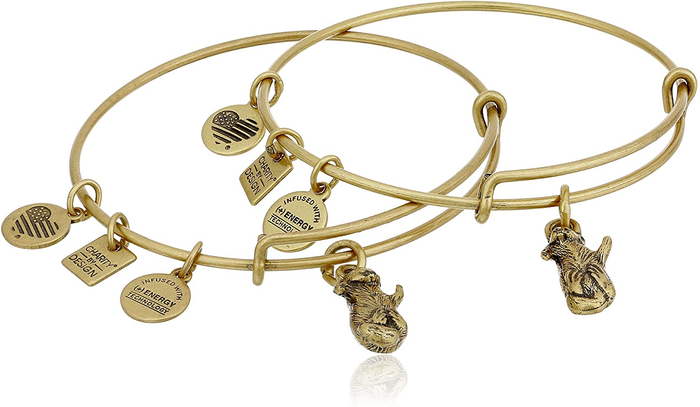 Alex and Ani Side by Side Bracelet