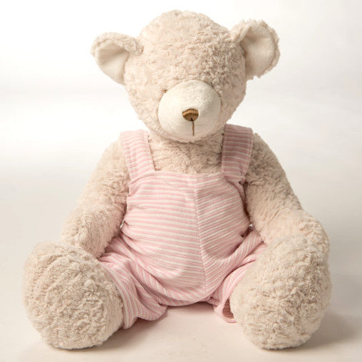Pink Shirt Teddy Bear