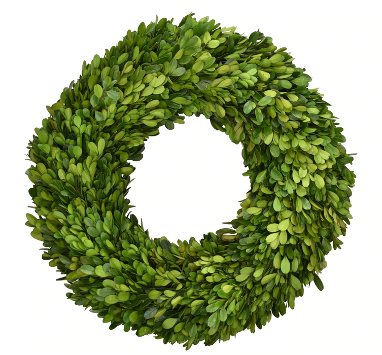 Preserved Boxwood Wreath, 16""