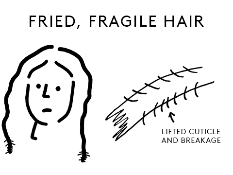 Fried and fragile hair