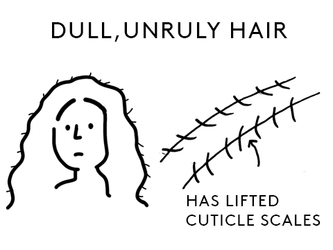 dull and unruly hair