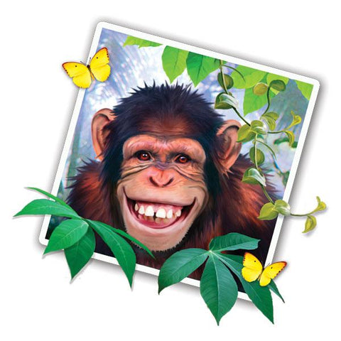 "Chimp Selfie 12"" Wall Slaps Decal"