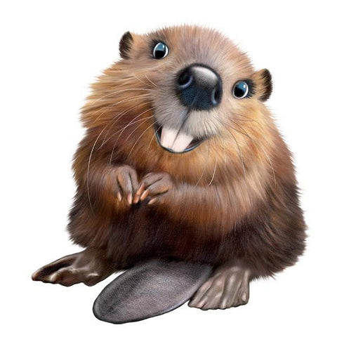 "Beaver 12"" Wall Slaps Decal"
