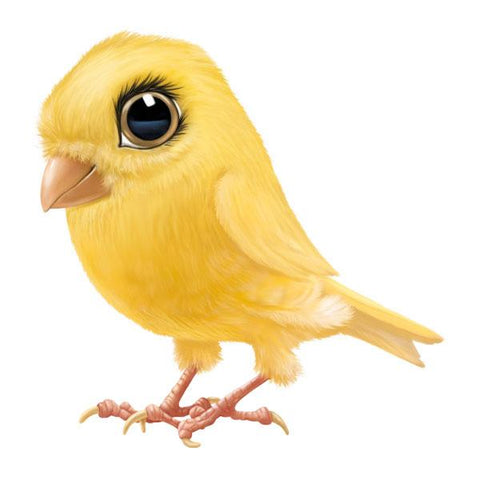 "Canary 12"" Wall Slaps Decal"