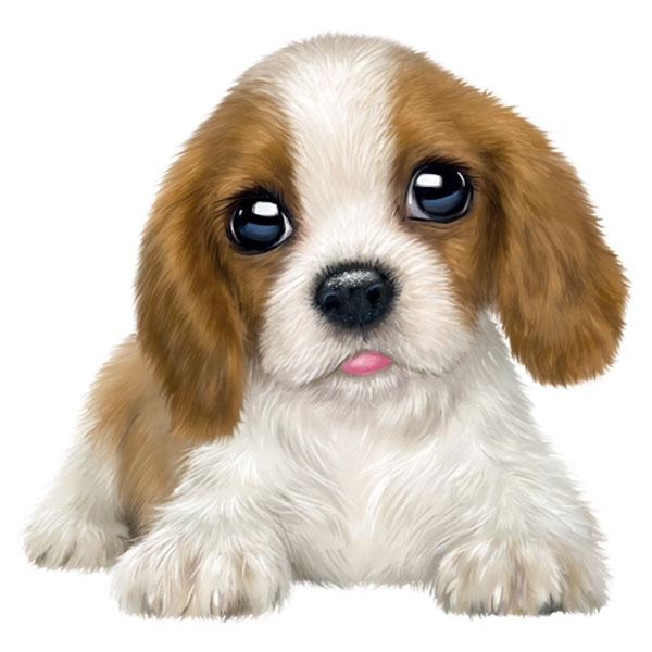 "Cavalier King Charles Spaniel 12"" Wall Slaps Decal"