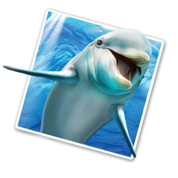 "Dolphin Selfie 12"" Wall Slaps Decal"
