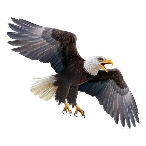 "Eagle 12"" Wall Slaps Decal"