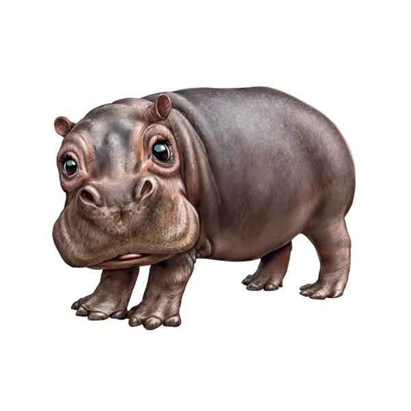 "Hippopotamus 12"" Wall Slaps Decal"
