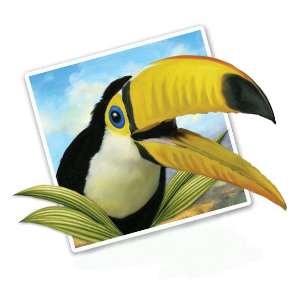 "Selfie Toucan 12"" Wall Slaps Decal"