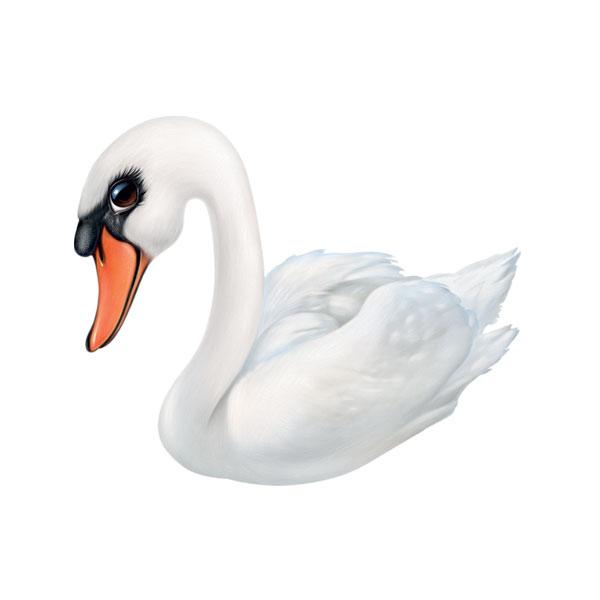 "Swan #2 12"" Wall Slaps Decal"