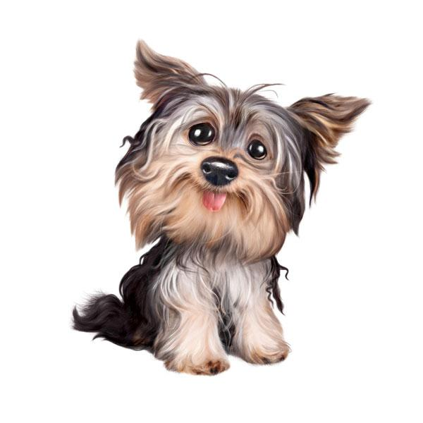 "Yorkie 12"" Wall Slaps Decal"