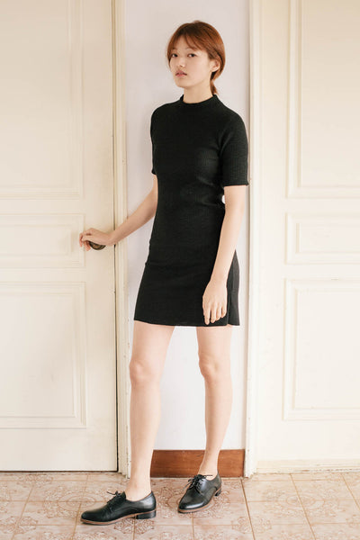 Ally high neck ribbed dress (textured)