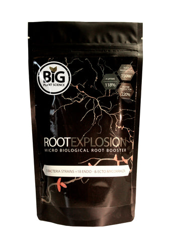 Root Explosion