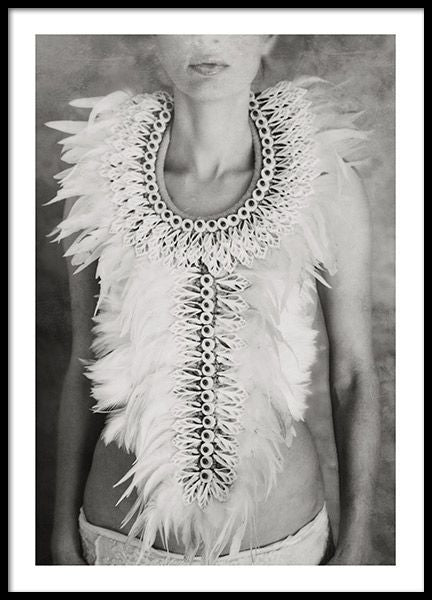 Feathers and Shells Poster - Tove Frank