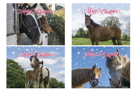ISPCA Equine Christmas Cards - Special Offer €5 per pack