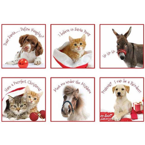 NEW! Christmas Cards
