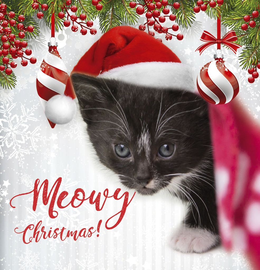 ISPCA Luxury Christmas Cards – ISPCA Shop